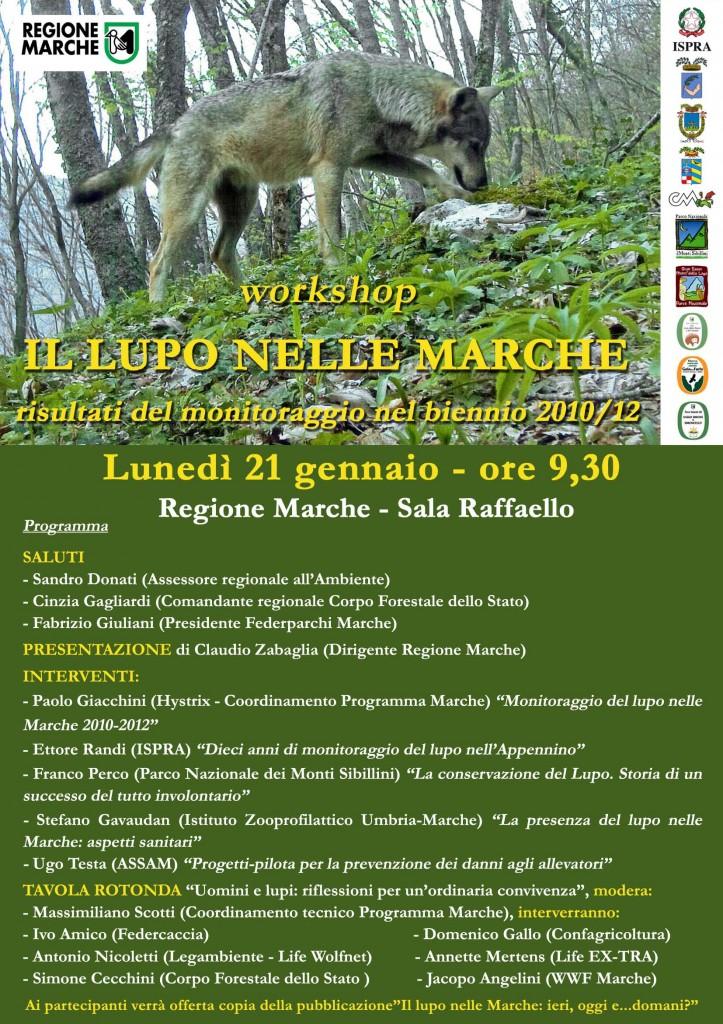 Il lupo nelle Marche – 21 gennaio 2013