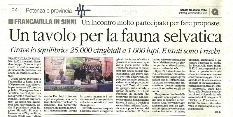 Secondo l'assessore all'agricoltura in Basilicata ci sarebbero 1000 lupi