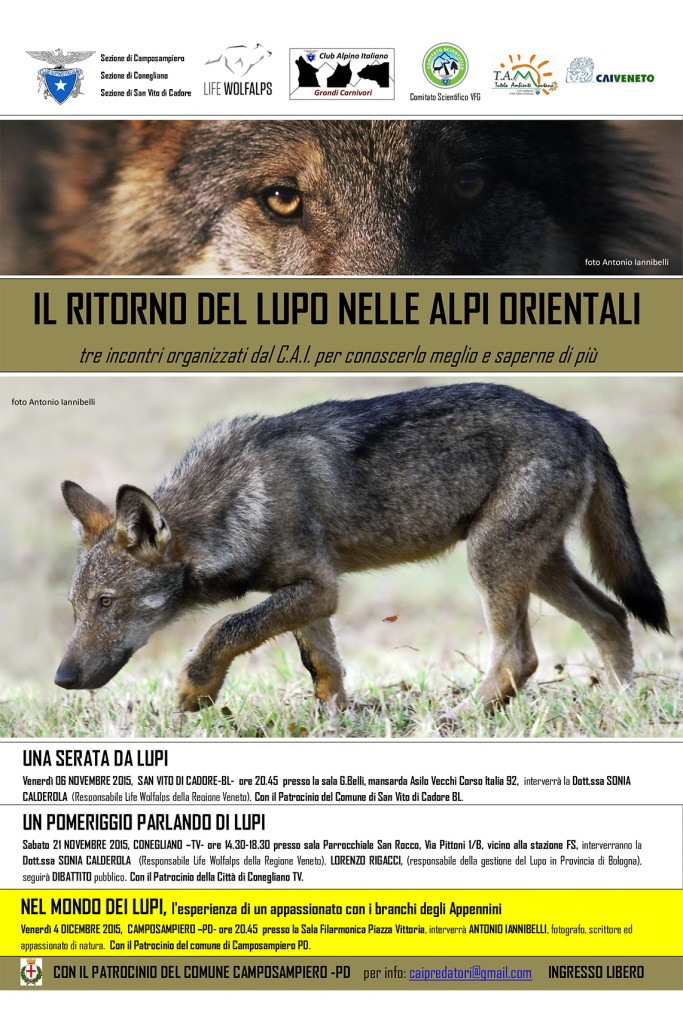 Nel mondo dei lupi – Camposanpiero Padova