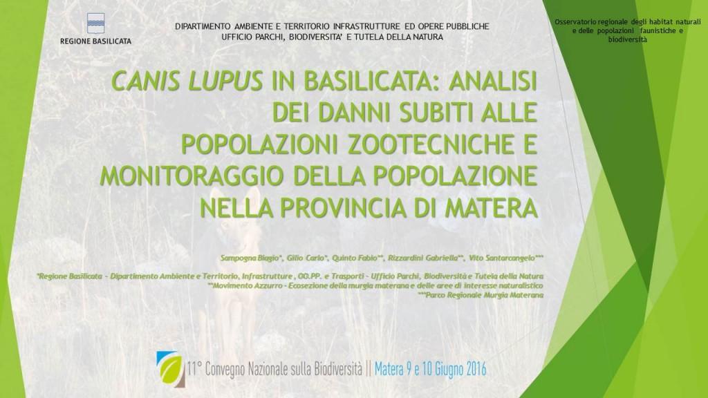Il lupo materano al XI Convegno Nazionale sulla Biodiversità